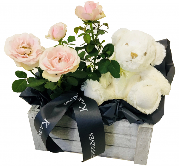 'It's A Girl' Rose and Teddy Gift Basket
