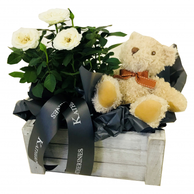 'It's A Boy' Rose and Teddy Gift Basket