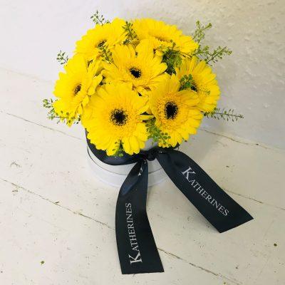 Yummy Yellow Germini Flowers Hatbox