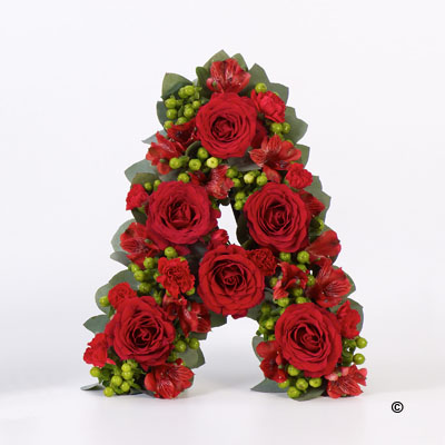 Rose and Hypericum Berry Letter