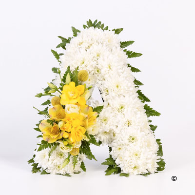Freesia Tribute Letter