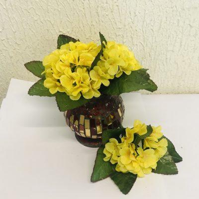 Individual Stem of Yellow Primula