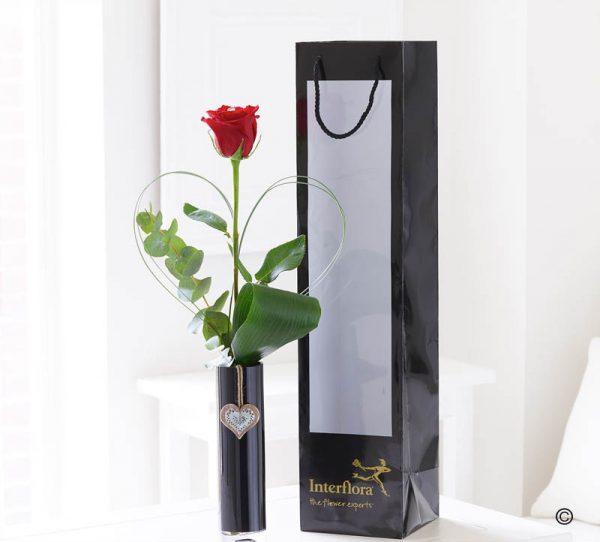 Single Kiss Rose Vase
