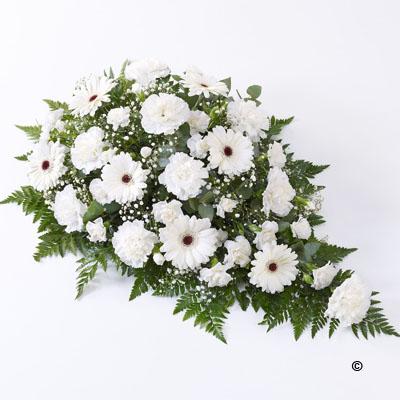 Carnation and Germini Teardrop Spray- White