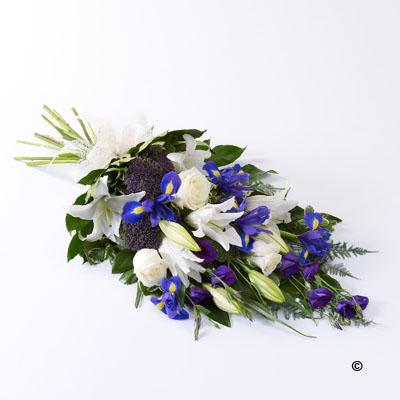 Classic Sheaf - Blue and White