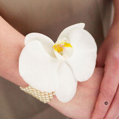Pearl Wrist Corsage - White Phalaenopsis Orchid