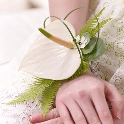 Anthurium Wrist Corsage - Cream