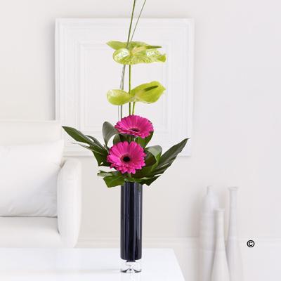 Gerbera & Anthurium Vase