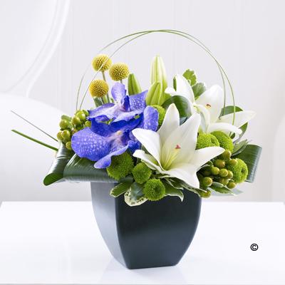 Lily & Vanda Orchid Arrangement