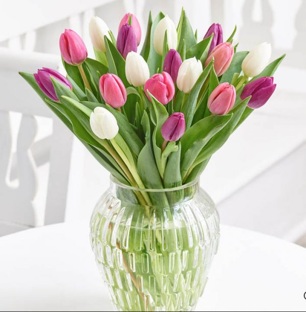 Pink Elegance Tulip Vase